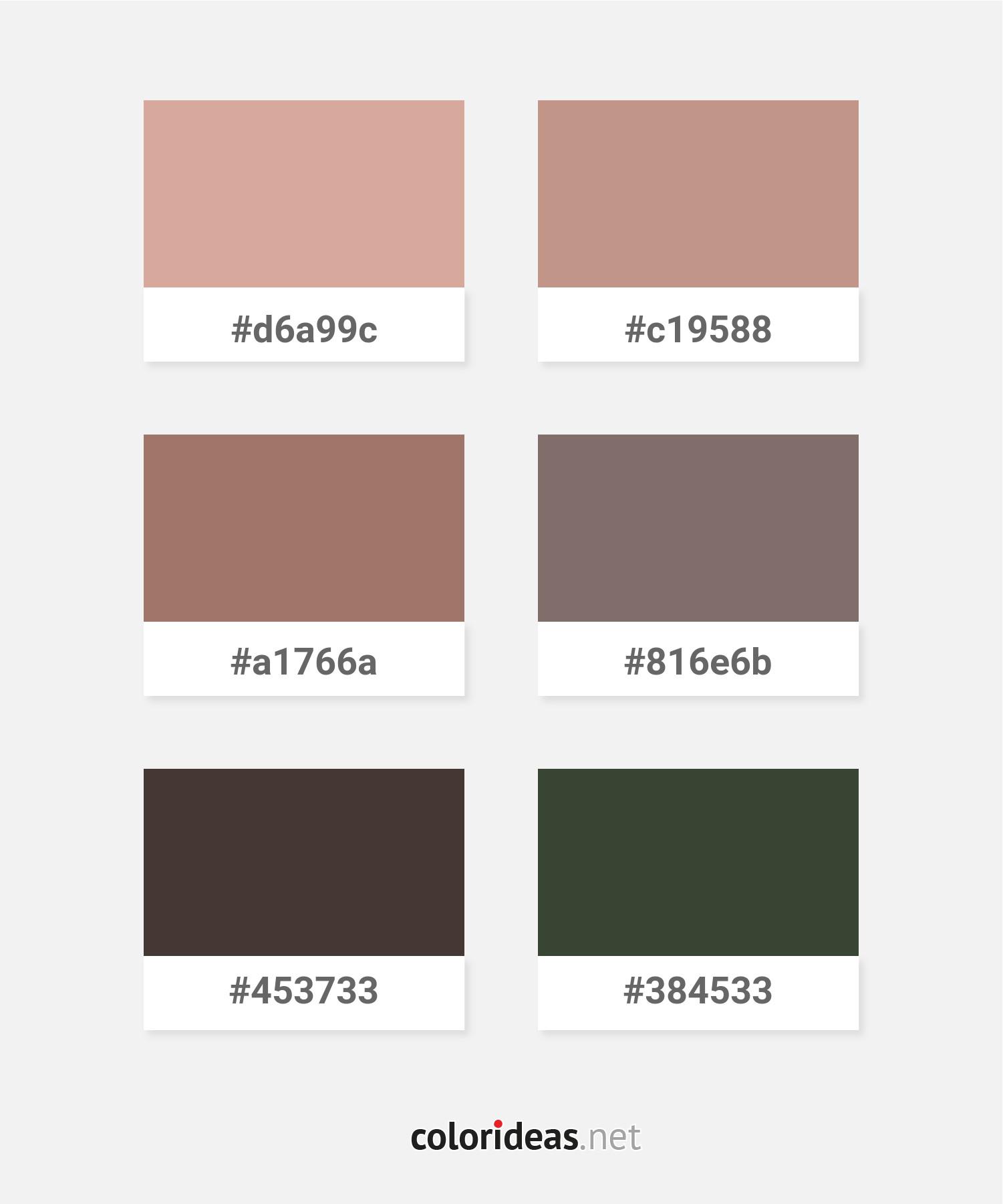 Peru – Light Salmon – Dim Gray – Black Color combinations Palette ...